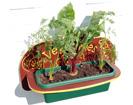 wall-planter-thumb