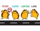 Stop,-Look,-Listen-&-Live-Thumb