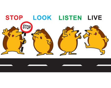 Stop,-Look,-Listen-&-Live