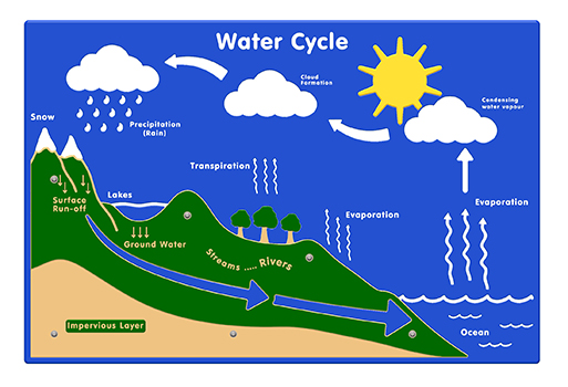Water Cycle Panel